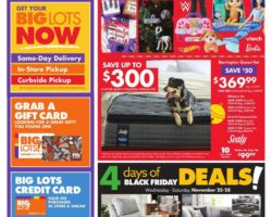 Big Lots Black Fiday Sale 2020 - Week of 11/25